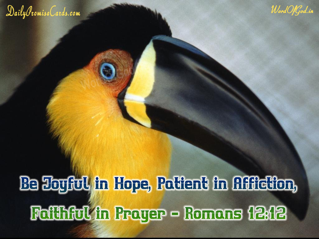 Romans 12:12 – English Promise Card #22