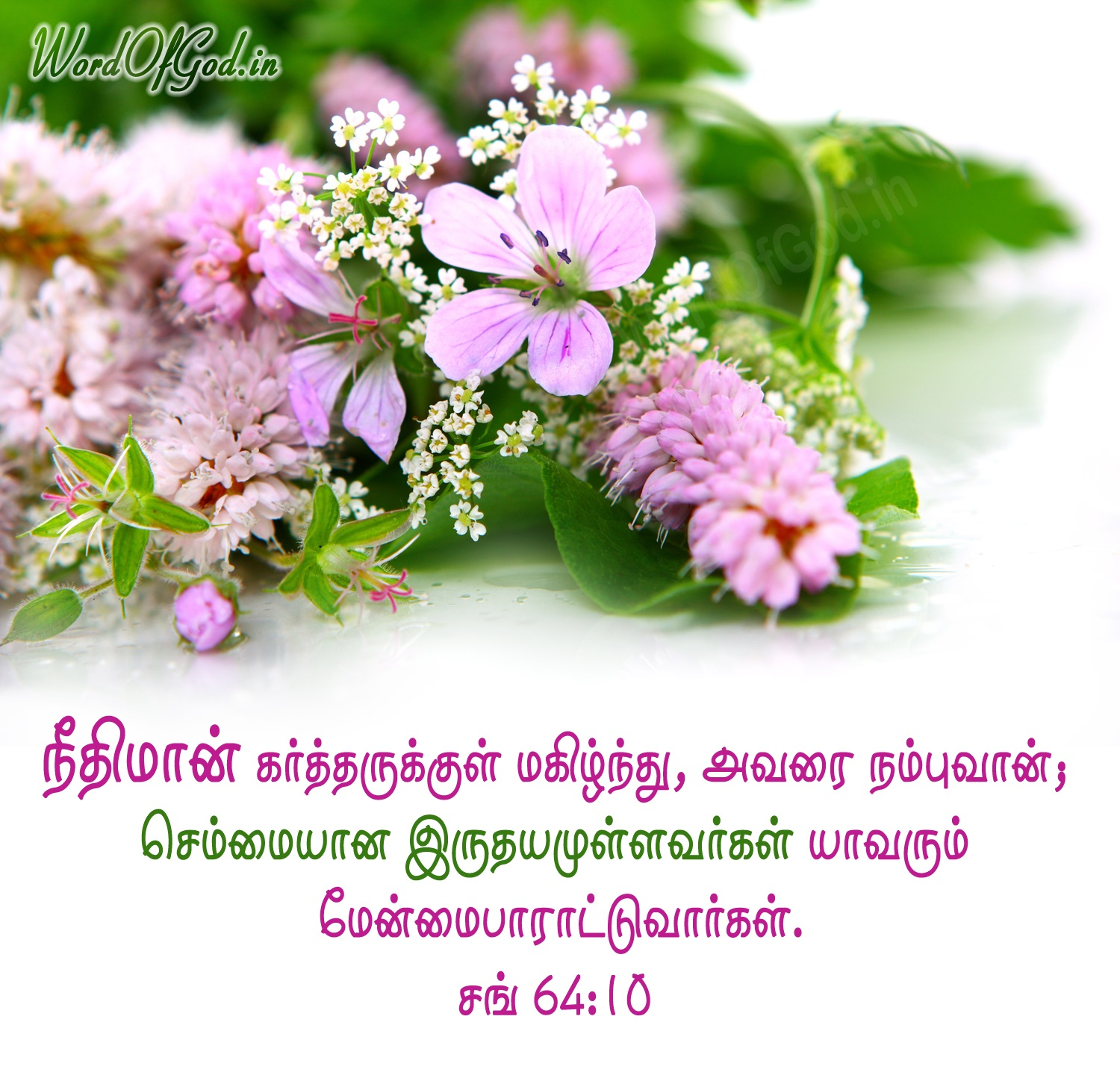 Tamil-Promise-Cards-Psalms-64-10