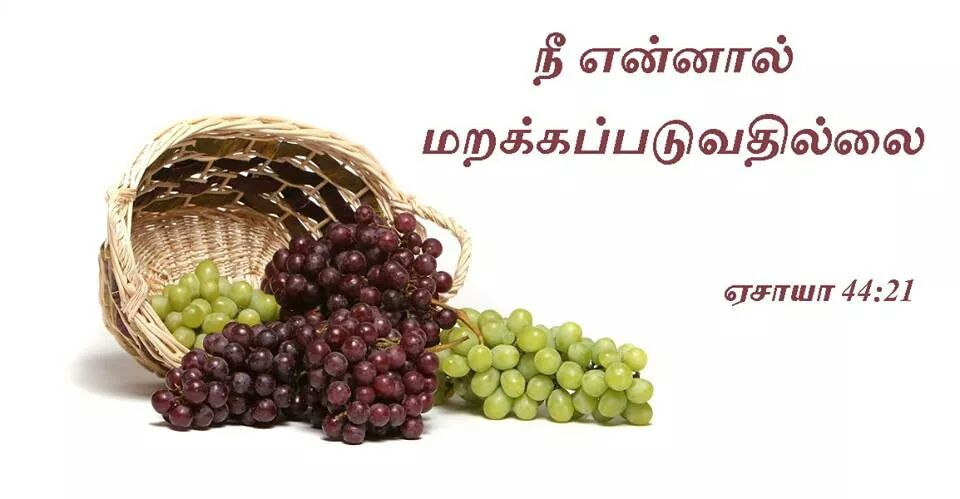 2014_Aug_05_Tamil_Promise_Card