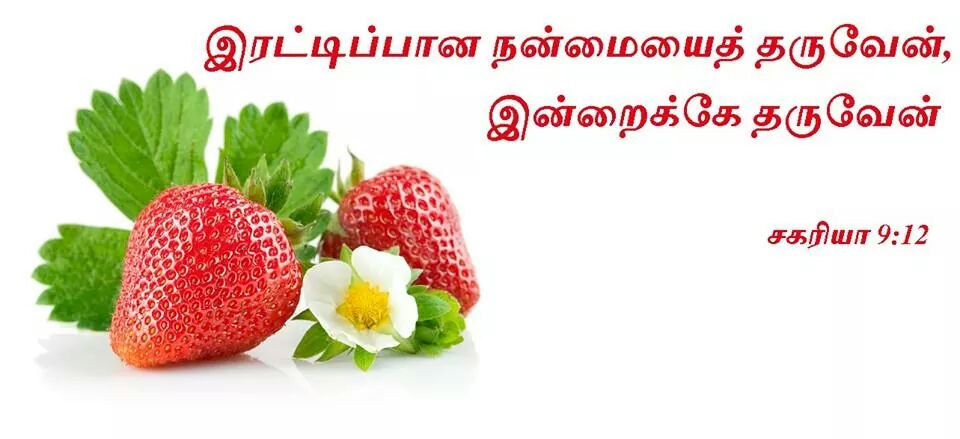 2014_Aug_06_Tamil_Promise_Card