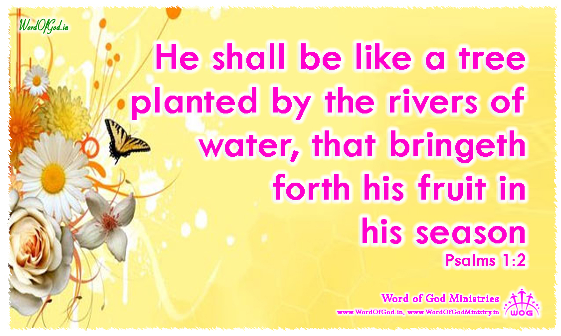 English-Promise-Cards-Psalms-1-3