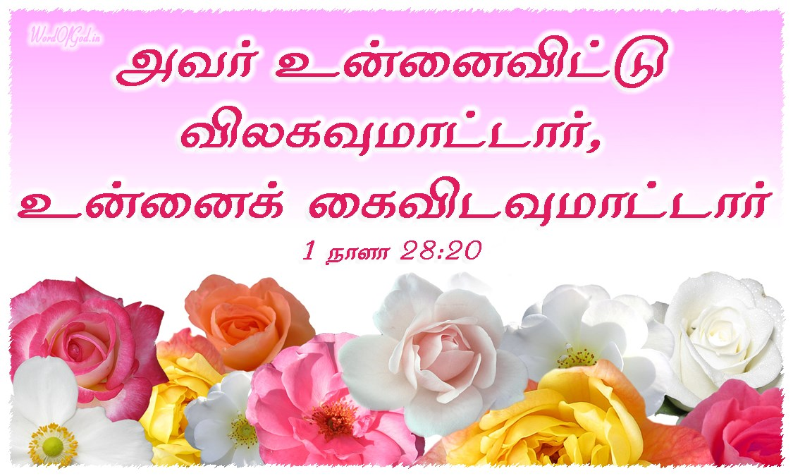 Tamil-Promise-Cards-1st-Chronicles-28-20_2