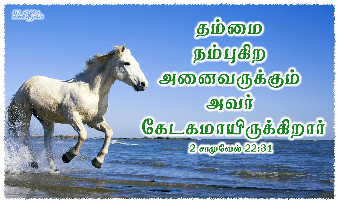 Tamil-Promise-Cards-2nd-Samuel-22-31_2
