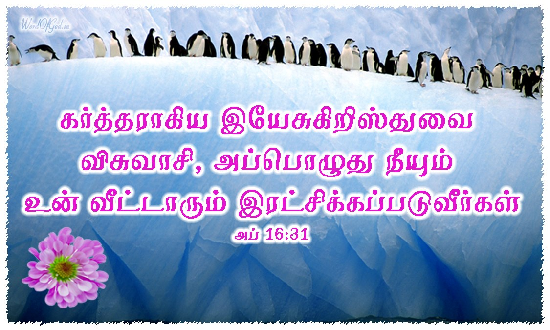 Tamil-Promise-Cards-Acts-16-31
