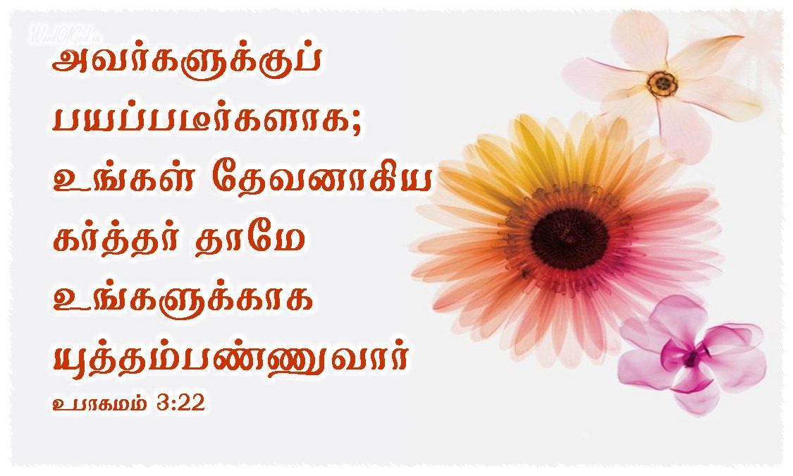 Tamil-Promise-Cards-Deuternomy-3-22