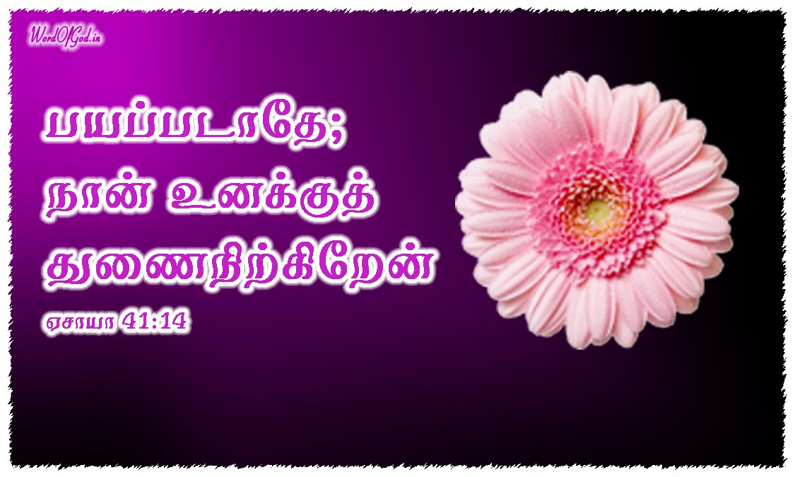 Tamil-Promise-Cards-Isaiah-41-14