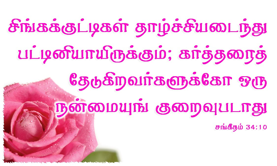 Tamil-Promise-Cards-Psalms-34-10