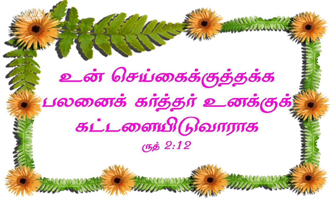 Tamil-Promise-Cards-Ruth-2-12