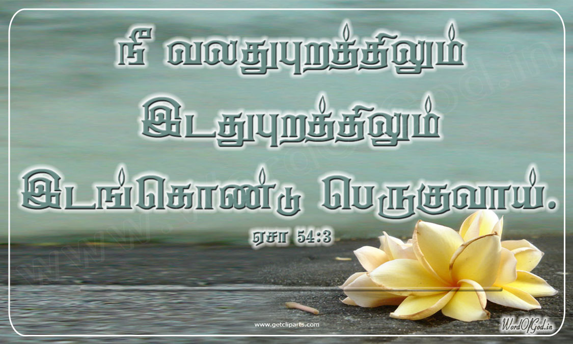 Tamil_Promise_Cards_011