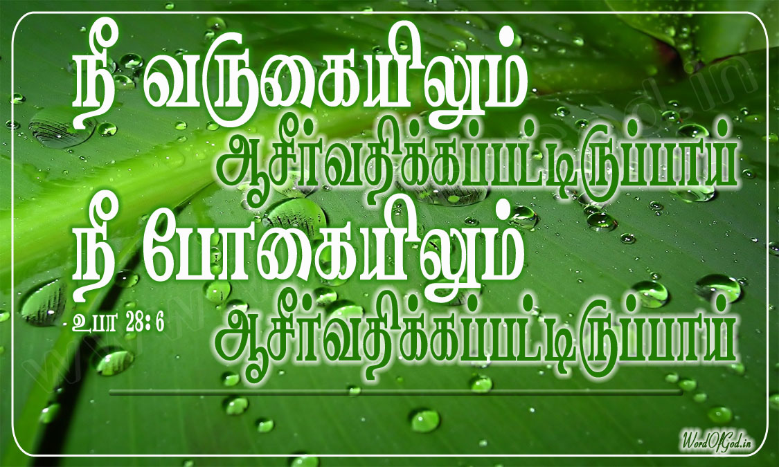 Tamil_Promise_Cards_047
