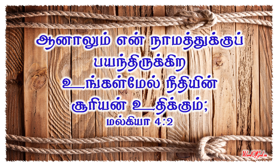 Tamil-Promise-Cards-127-Malachi-4-2
