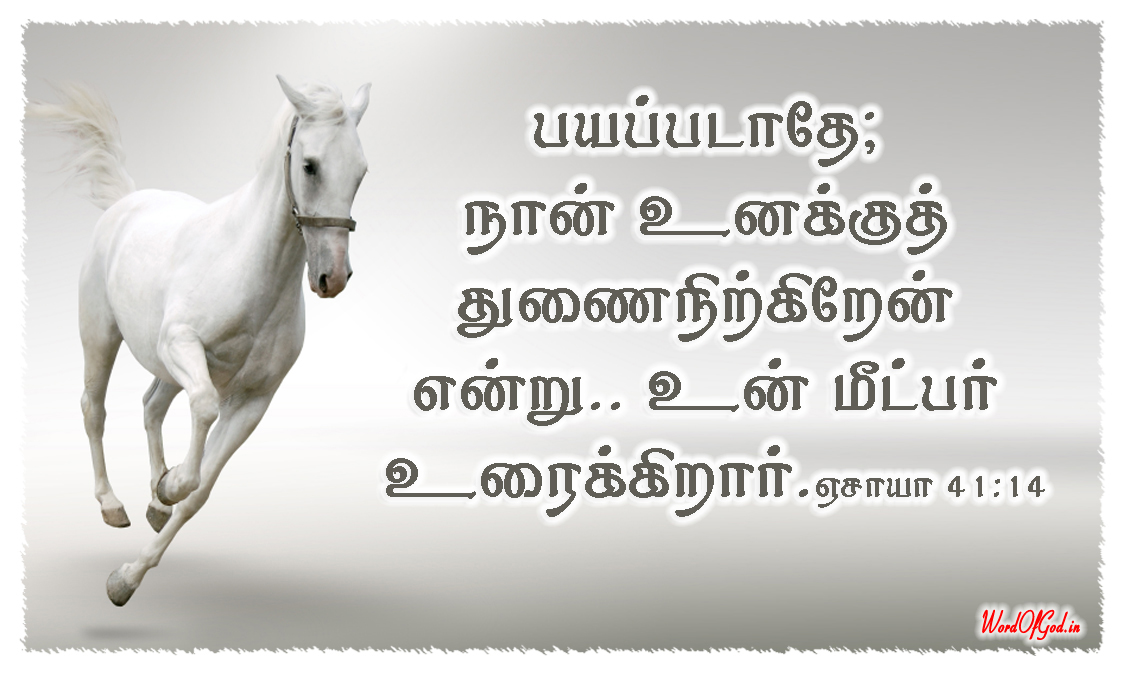 Tamil-Promise-Cards-129-Isaiah-41-14