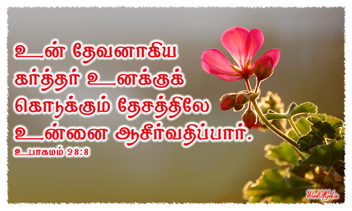 Tamil-Promise-Cards-164-Deuteronomy-28-8