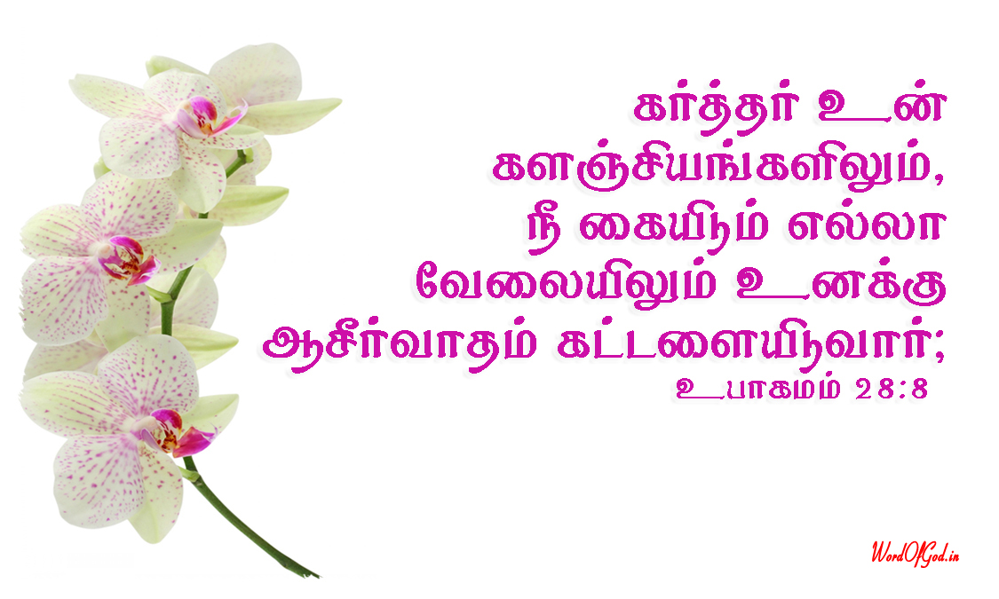 Tamil-Promise-Cards-165-Deuteronomy-28-8