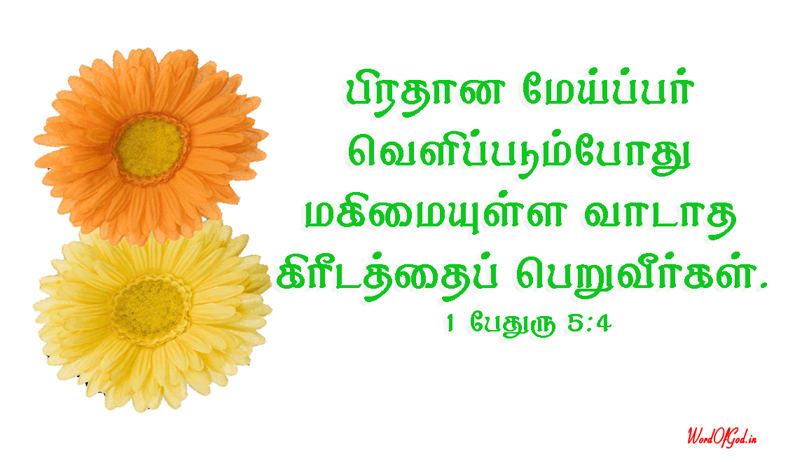 Tamil-Promise-Cards-171-1st-Peter-5-4