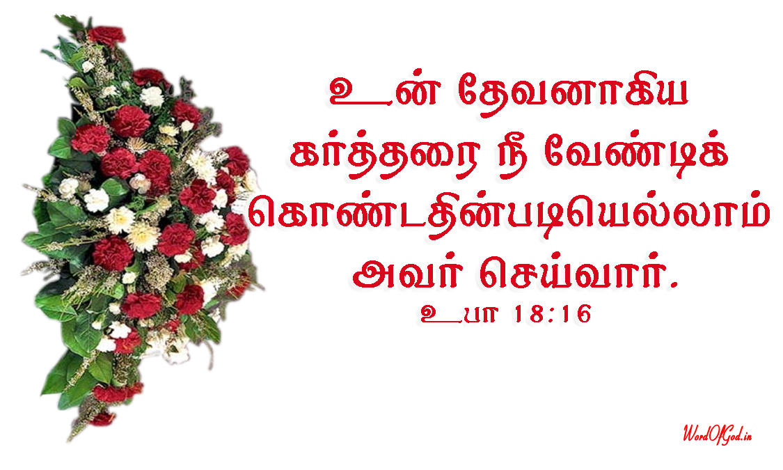 Tamil-Promise-Cards-186-Deuteronomy-18-16
