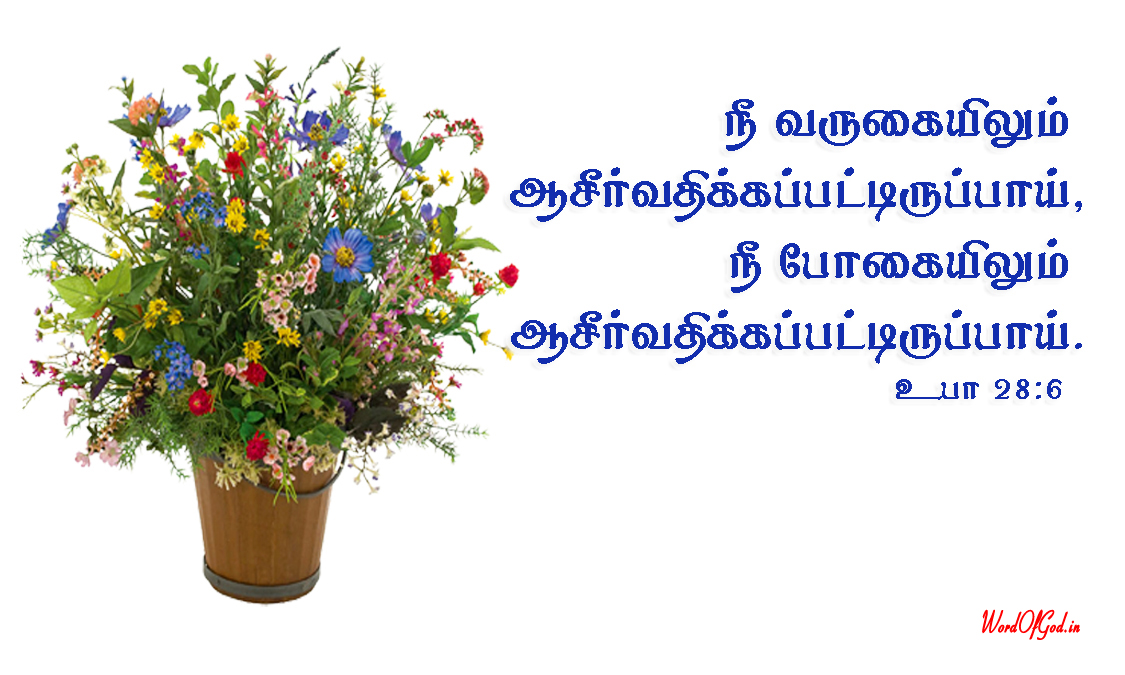 Tamil-Promise-Cards-187-Deuteronomy-28-6