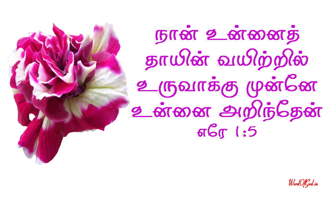 Tamil-Promise-Cards-194-Jeremiah-1-5
