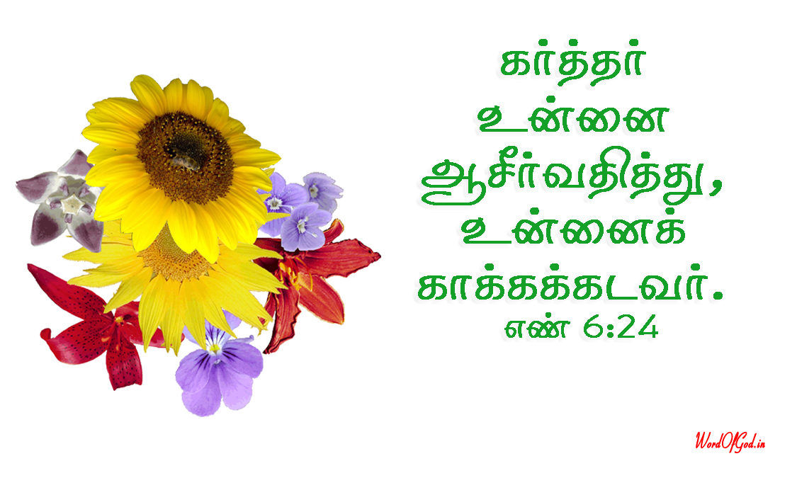 Tamil-Promise-Cards-195-Numbers-6-24