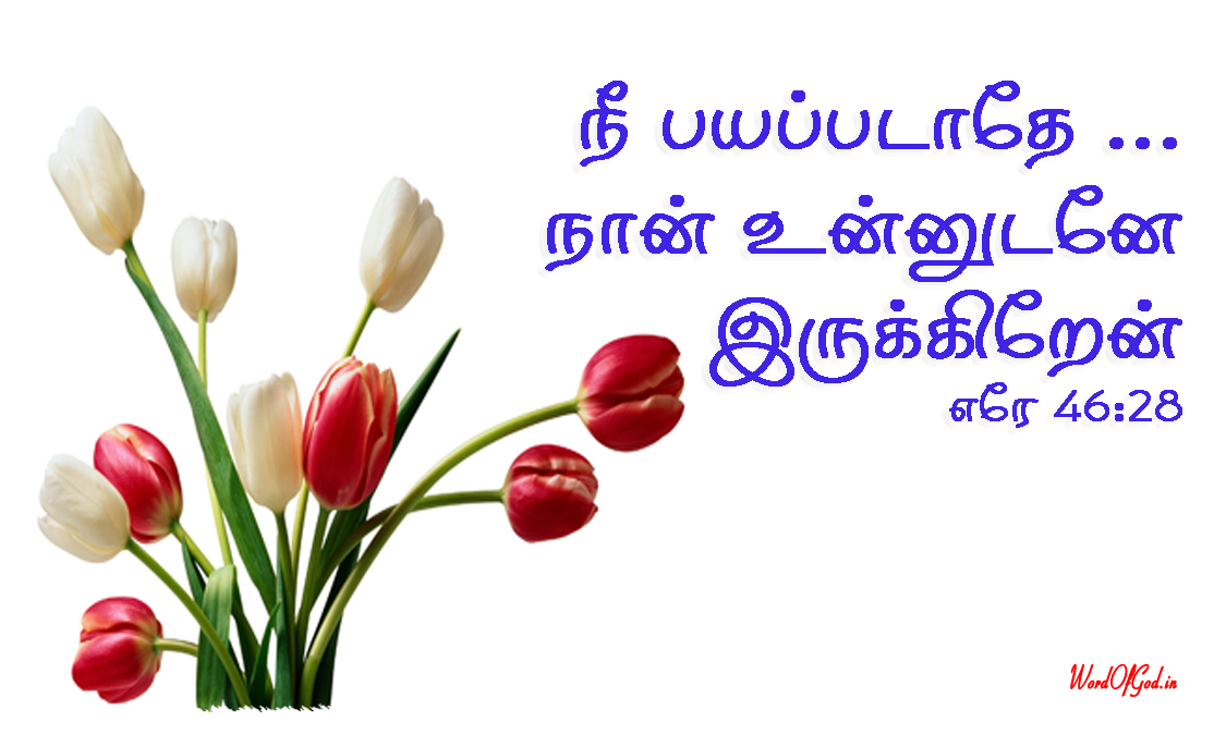 Tamil-Promise-Cards-200-Jeremiah-46-28