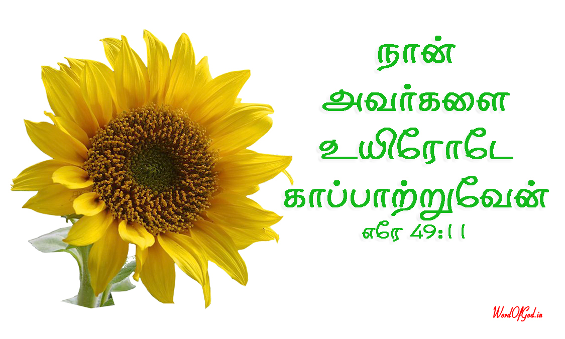 Tamil-Promise-Cards-201-Jeremiah-49-11