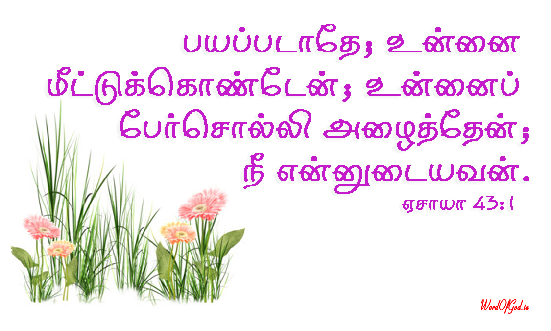 Tamil-Promise-Cards-204-Isaiah-43-1