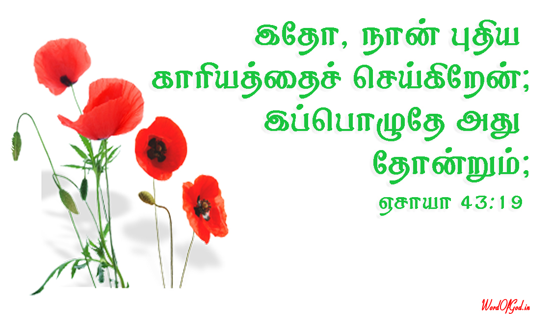 Tamil-Promise-Cards-207-Isaiah-43-19