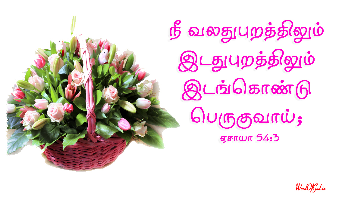Tamil-Promise-Cards-216-Isaiah-54-3