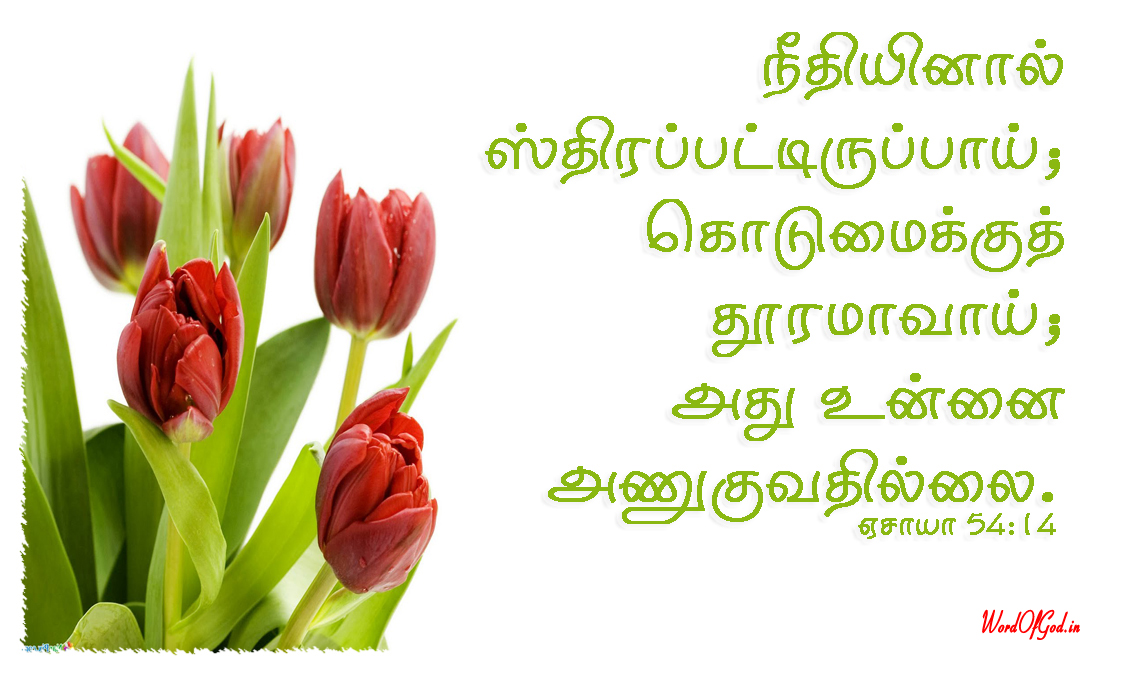 Tamil-Promise-Cards-217-Isaiah-54-14