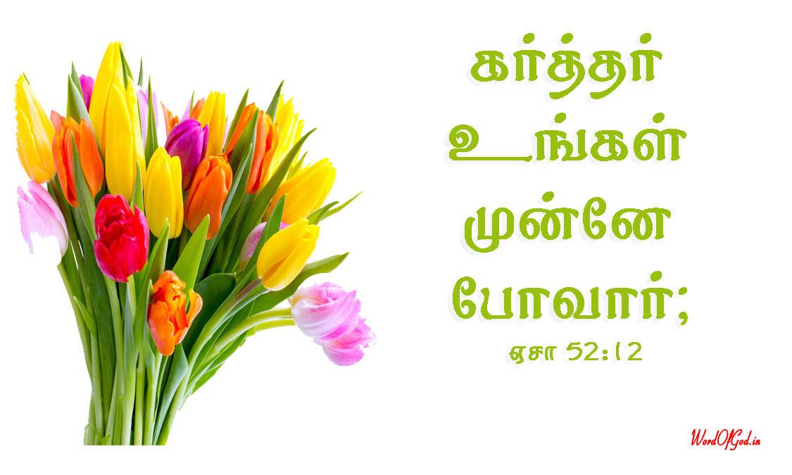 Tamil-Promise-Cards-220-Isaiah-52-12