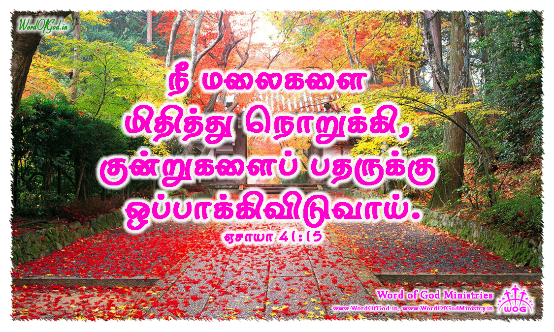 Tamil-Promise-Cards-Isaiah-41-15