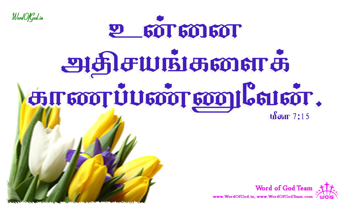 Tamil-Promise-Cards-Micah-7-15