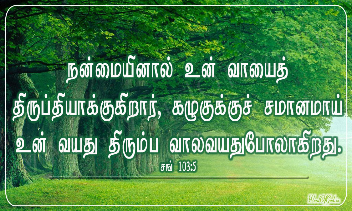 Tamil_Promise_Cards_046