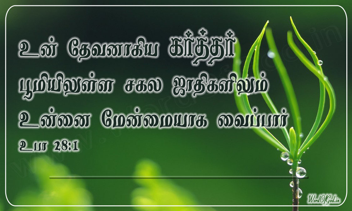 Tamil_Promise_Cards_074