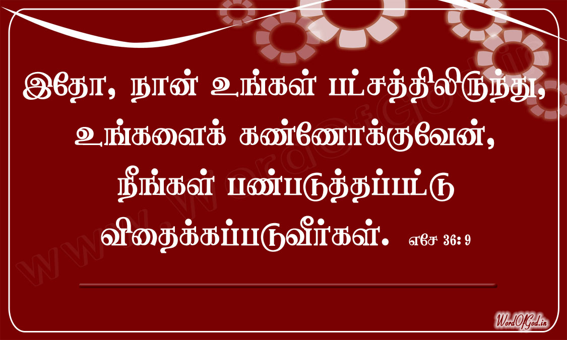 Tamil_Promise_Cards_080