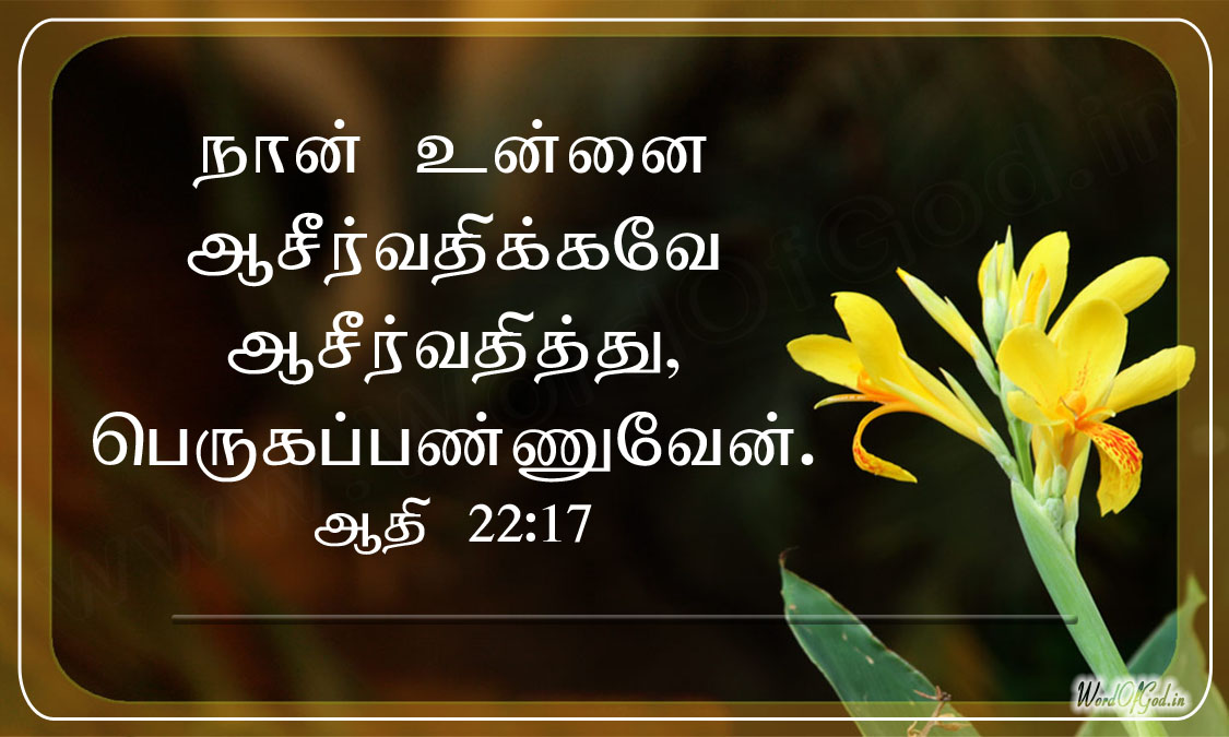 Tamil_Promise_Cards_124