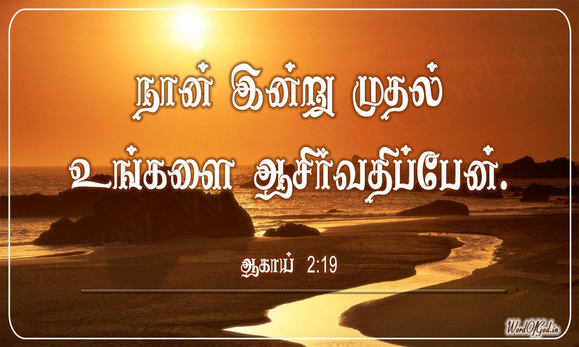 Tamil_Promise_Cards_143